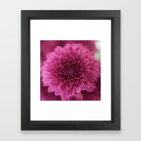 Pinks Framed Art Print