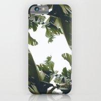 Birds of California iPhone 6 Slim Case