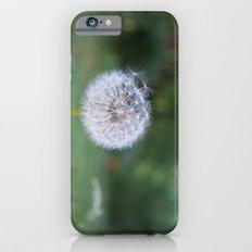 Dandelion Slim Case iPhone 6s