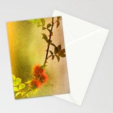 Robin's Pincushion Stationery Cards