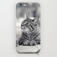 iPhone & iPod Case featuring Look at That by Katie Kirkland Photography