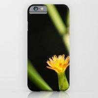 iPhone & iPod Case featuring Orange Wildflower by Ruben Alexander