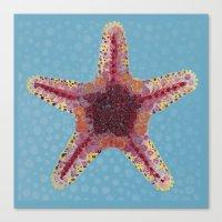 Sea Star 2 Canvas Print
