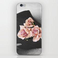 AMBROSIA iPhone & iPod Skin