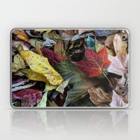 Leaves On The Ground Laptop & iPad Skin
