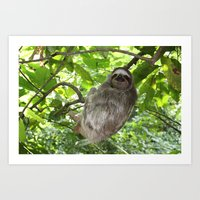 Sloths in Nature Art Print