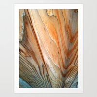 Wood Texture II Art Print