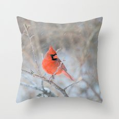 Hanging On (Cardinal In … Throw Pillow
