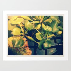 Green House I  Art Print