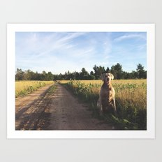 Farm Field with Charley Art Print