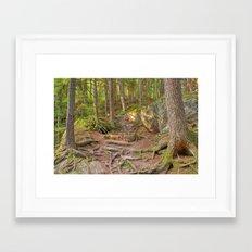Green Mountain Forest Trail Framed Art Print