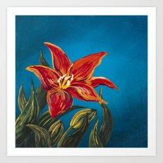Morning Star Lily Art Print