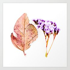 Nature Flower and Autumn Leaf Art Print