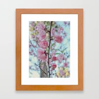 Soft Pink Cherry Blossom… Framed Art Print