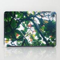 skylight iPad Case