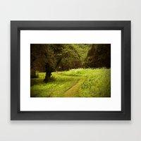 A Summers Trail Framed Art Print