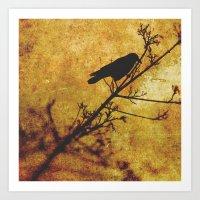 Solitary Bird Art Print