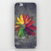 Autumn Colors iPhone & iPod Skin