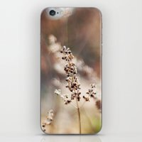 Winter Color iPhone & iPod Skin