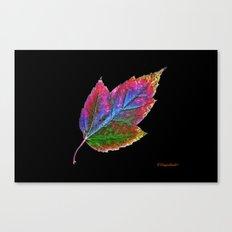 New Leaf Canvas Print