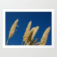 A soft breeze, against a cobalt sky. Art Print