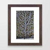 tree brunches Framed Art Print