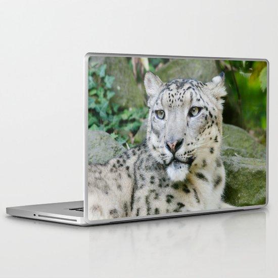Snow Leopard stare Laptop & iPad Skin