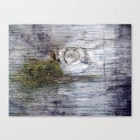 Eye of the Barn Canvas Print