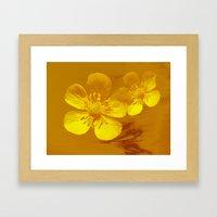 FLOWERS - Bonnie Butterc… Framed Art Print