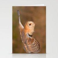 Barn Owl in Flight Stationery Cards