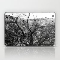 Castle Tree Laptop & iPad Skin