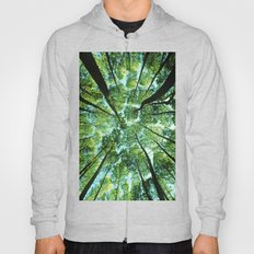 Looking up in Woods Hoody