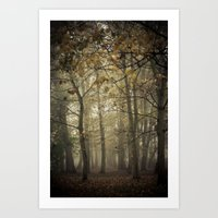 Looking For Something Art Print