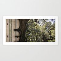 Treeway Art Print