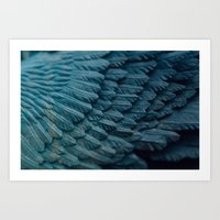Ombre wings Art Print