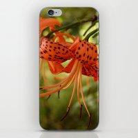 Wild Tiger Lily iPhone & iPod Skin