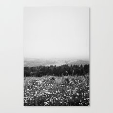 Mountain Wildflowers Canvas Print