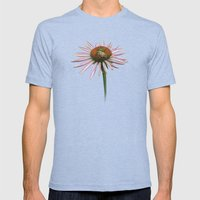 coneflower & bee postale Mens Fitted Tee Tri-Blue SMALL