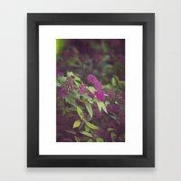 purple flower. Framed Art Print