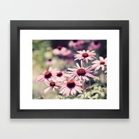 Sweet Daisies Framed Art Print