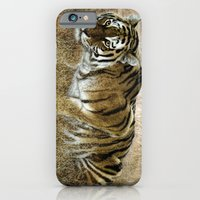 iPhone & iPod Case featuring Ready to pounce. by tarrby