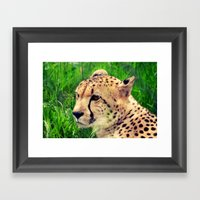These Beautiful Eyes Framed Art Print