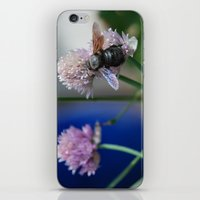 Carpenter Bee 1 iPhone & iPod Skin