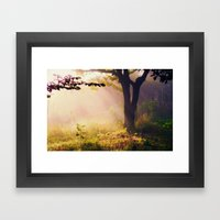 Golden Morning Framed Art Print