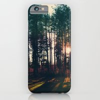 The Trees And The Sun iPhone 6 Slim Case