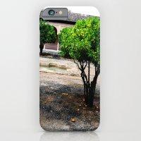 Courtyard iPhone 6 Slim Case
