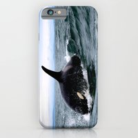 iPhone & iPod Case featuring Willy by Tosha Lobsinger is my Photographer