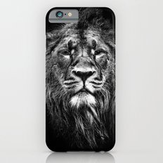 Male Asiatic Lion iPhone 6 Slim Case
