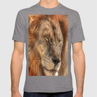 Lion Heart Mens Fitted Tee Tri-Grey SMALL