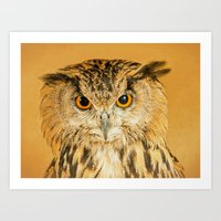 OWL RIGHT ON THE NIGHT Art Print